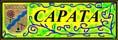 Сайт поселка Сарата